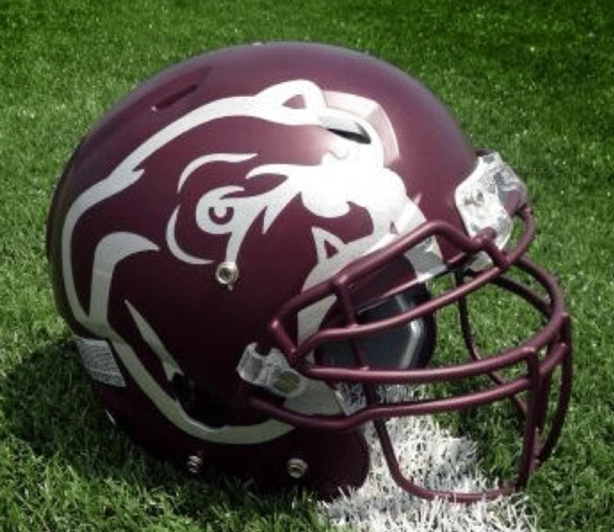 Miss State helmet