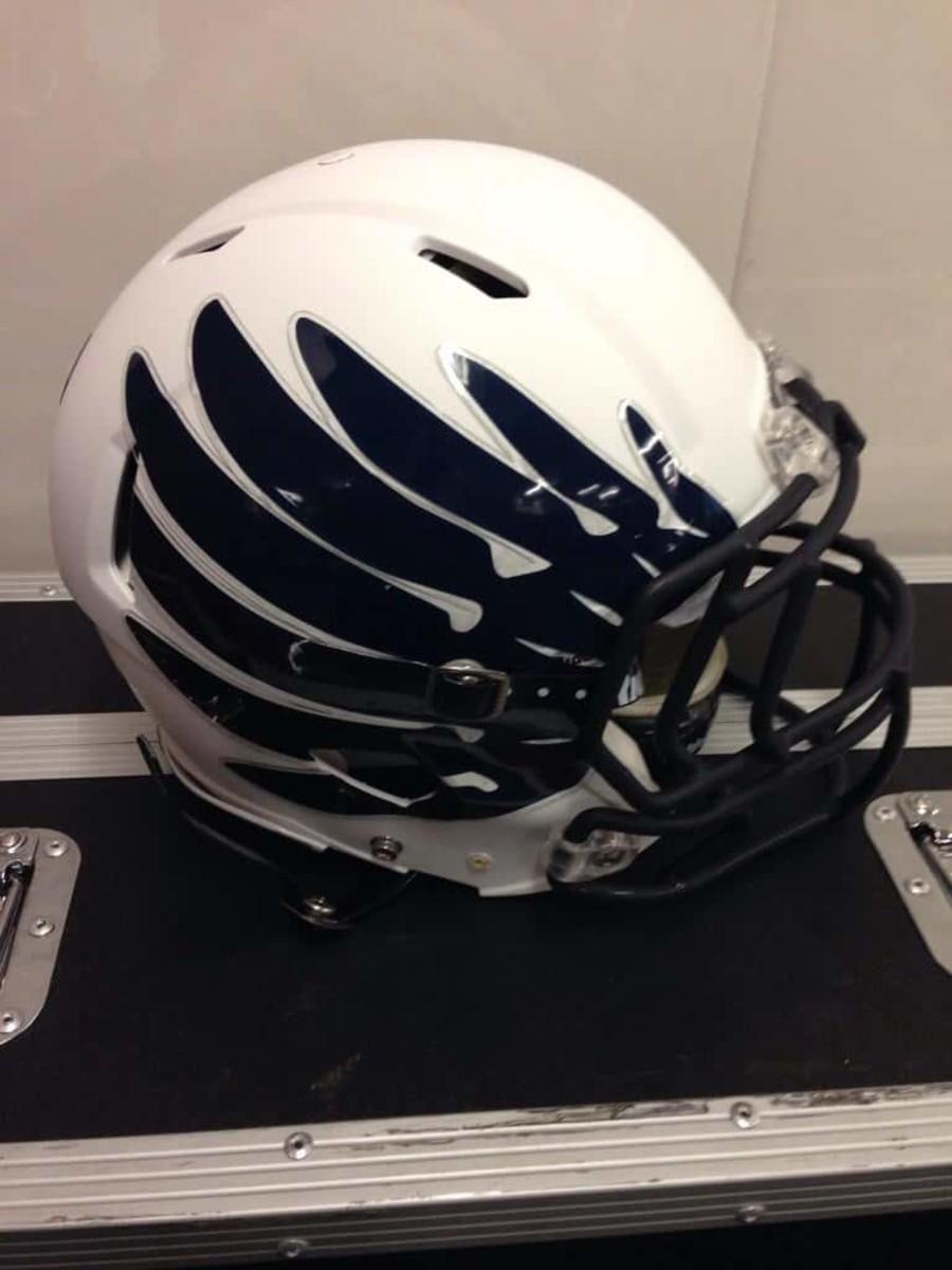 Rice helmet 2